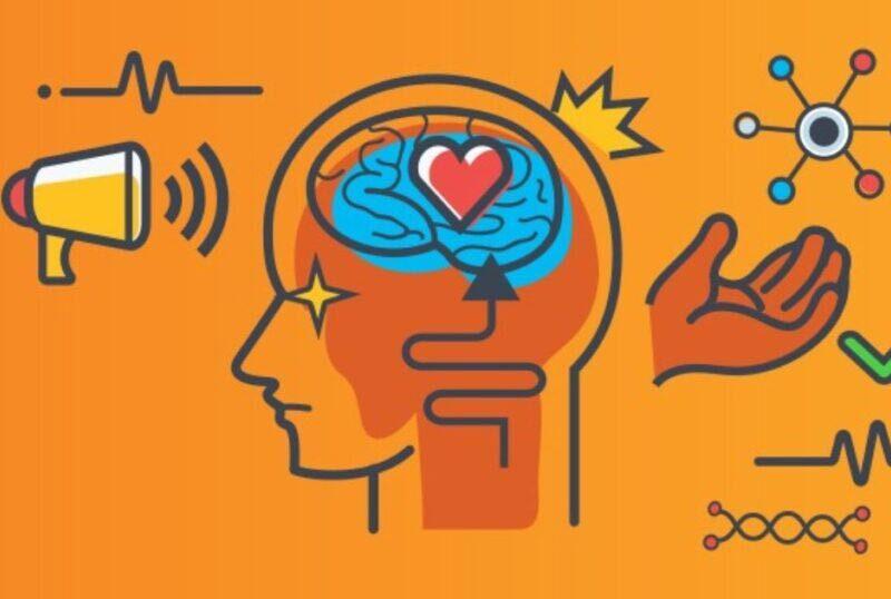 بازاریابی عصبی (Neuromarketing) چیست و چه تاثیری در خرید دارد؟
