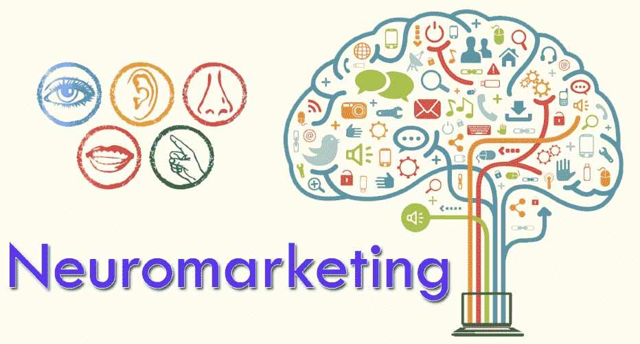 چرا باید از بازاریابی عصبی استفاده کرد و چه مزایایی به همراه دارد؟